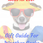 Weather Related Gift Ideas for 2017-Gift Guide for Weather Geeks